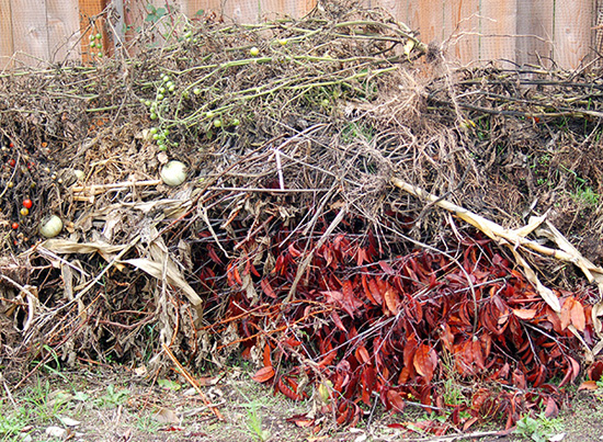 Gardens generate waste which is useful for making compost.