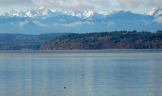 The Olympic Mountains form a spectacular backdrop to this scene of Hood Canal