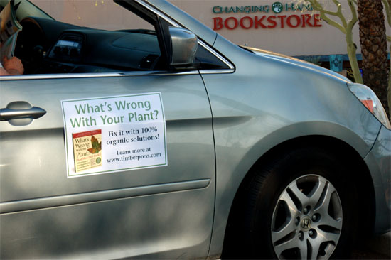 car and bookstore