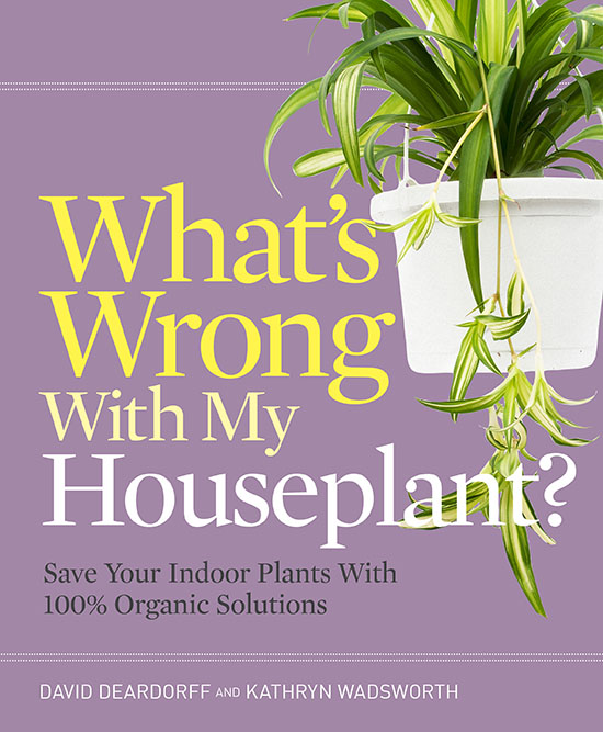 What's Wrong With My Houseplant COVER 550