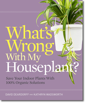 houseplant_ds
